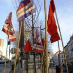 Des drapeaux pour protéger l'arbre (Photo N Bernard)