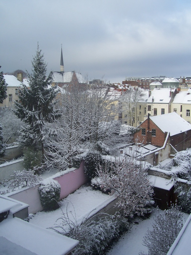 100_3482_Ilot_Vautier_Wiertz_sous_la_neige.jpg