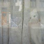 1. Le chat. Chaussée Saint-Pierre.