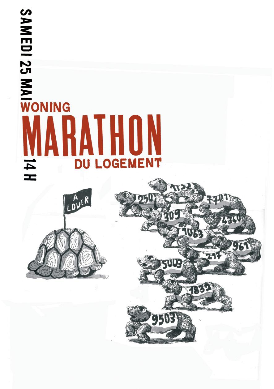 marathontortue.jpg